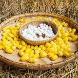 Желтая раковина кокона шелкопряда через Silk трассу Стоковое Изображение