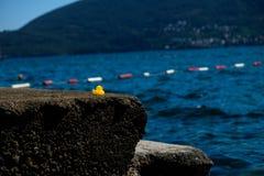 Желтая резиновая утка на пляже моря Adria Стоковые Фотографии RF