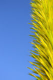 Желтая стеклянная структура с небом Стоковые Изображения RF