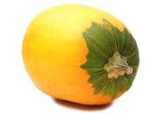 Желтая тыква Стоковое Изображение