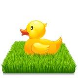 Желтая утка на свежей зеленой траве 10eps Стоковые Изображения RF