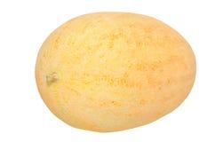 Желтая дыня на белизне Стоковые Изображения RF