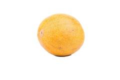 Желтая дыня Стоковое Фото