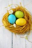 Желтое гнездо с покрашенными яичками Стоковые Изображения RF