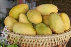 Желтое манго в корзине, Филиппины Стоковые Фото