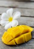 Желтое манго и plumeria Стоковые Фото
