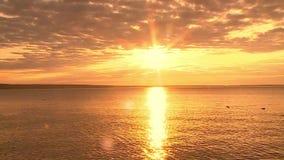 Желтое небо рассвета сток-видео