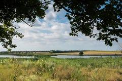 Желтое поле цветка рапса и голубое небо около реки Стоковая Фотография