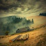 Желтое valley_vintage_1 Стоковое Изображение
