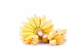 Желтые банан яичка и рука зрелых золотых бананов на еде плодоовощ банана Mas Pisang белой предпосылки здоровой Стоковое Изображение