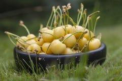 Желтые вишни в черном деревянном шаре Стоковые Изображения RF
