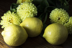 Желтые лимоны и цветки Стоковая Фотография RF