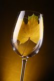 Желтые лист в стекле Стоковые Изображения RF