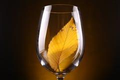 Желтые лист в стекле Стоковые Фотографии RF