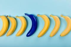 Желтые и голубые бананы изолированные на голубых, зрелых бананах Стоковая Фотография