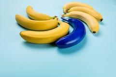 Желтые и голубые бананы изолированные на голубых, зрелых бананах Стоковые Фото