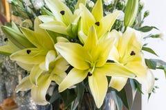 Желтые лилии красивы в вазе Стоковая Фотография