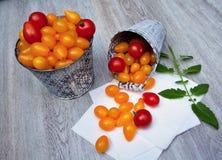 Желтые и красные томаты Стоковое Изображение