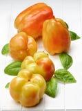 Желтые и померанцовые перцы колокола Стоковая Фотография RF