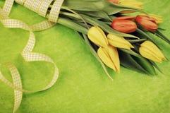 Тюльпаны пасхи Стоковые Фотографии RF