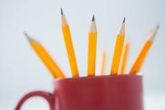 Желтые карандаши цвета держали в кружке на белой предпосылке Стоковые Изображения