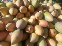 Желтые манго для продажи на индийском магазине Стоковая Фотография