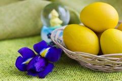Желтые пасхальные яйца в корзине и голубой радужке Стоковое Фото