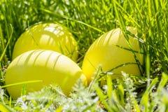 Желтые пасхальные яйца в траве, крупном плане Стоковые Изображения