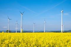 Желтые поле и windwheels рапса Стоковое фото RF