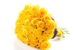 Желтые розы изолированные на белой предпосылке Стоковое Изображение