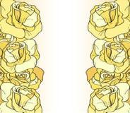 Желтые розы Иллюстрация штока