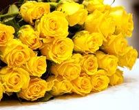Желтые розы Стоковые Фото