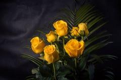 Желтые розы Стоковая Фотография