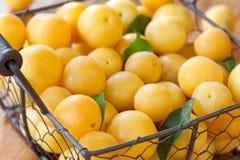 Желтые сливы Стоковое Изображение RF