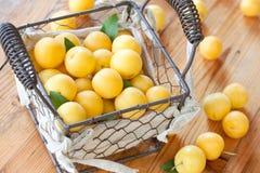 Желтые сливы Стоковая Фотография