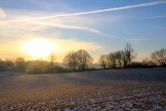Желтые тени на снежном поле Стоковые Фото