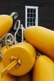 Желтые томбуи стоковые фотографии rf
