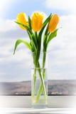 Желтые тюльпаны в вазе на силле окна Стоковые Фотографии RF
