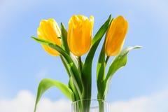 Желтые тюльпаны в вазе на силле окна Стоковое фото RF