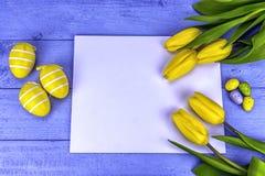 Желтые тюльпаны пасхи Стоковые Фотографии RF