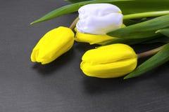 Желтые тюльпаны пасхи Стоковое Фото