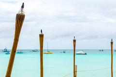 Желтые факелы на голубом тропическом море, острове Филиппин Boracay Стоковая Фотография