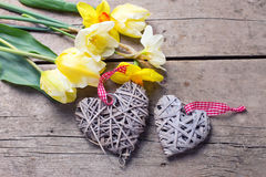 Желтые цветки весны и 2 декоративных сердца Стоковое Изображение