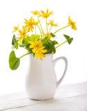 Желтые цветки в белой вазе на белой предпосылке Стоковые Изображения
