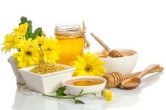 Желтые цветки и продукты мед пчелы, цветень Стоковое Изображение RF