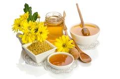 Желтые цветки и продукты мед пчелы, цветень Стоковые Изображения