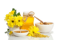 Желтые цветки и продукты мед пчелы, цветень Стоковая Фотография RF