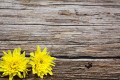 Желтые цветки на винтажном деревянном столе Стоковая Фотография