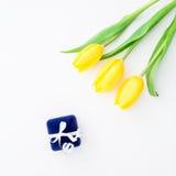 Желтые цветки тюльпана и коробка кольца на белой предпосылке Плоское положение, взгляд сверху Стоковое Фото