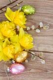 Желтые цветки narcissus с catkins стоковое изображение rf